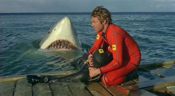 last shark 1